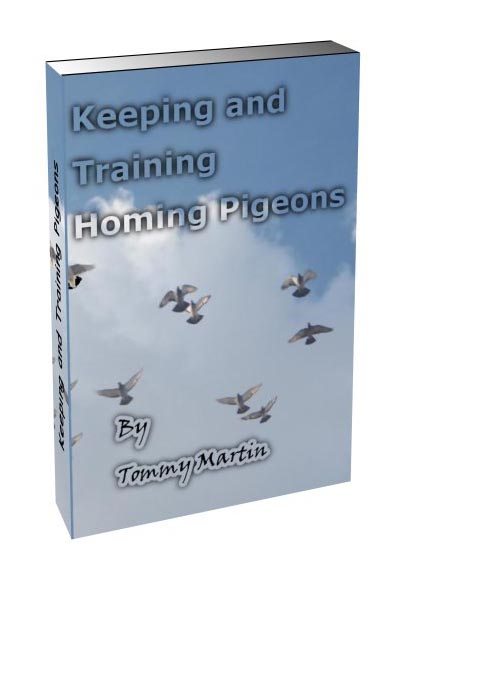 Pigeon Training book